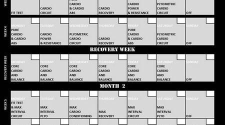 Insanity Printable Workout Calendar pdfInsanity Calendar Printable